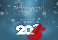 Reflexolodge vous souhaite une très belle année 2015